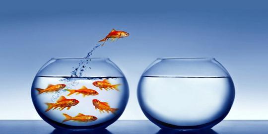 indra_organizaciones-disruptivas